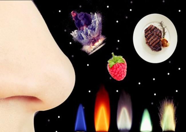 15 sự thật thú vị về vũ trụ, cuộc sống ảnh 7