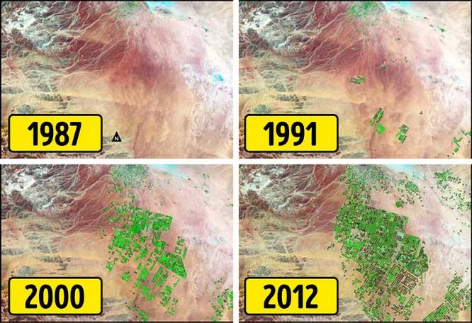 Chùm ảnh chứng minh thế giới đã thay đổi chóng mặt trong 50 năm qua ảnh 5