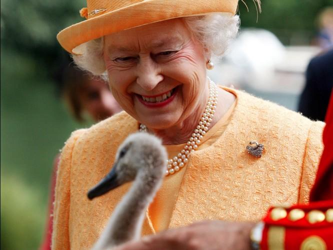 """""""Bật mí"""" những điều thú vị có thể bạn chưa biết về Nữ hoàng Anh ảnh 8"""
