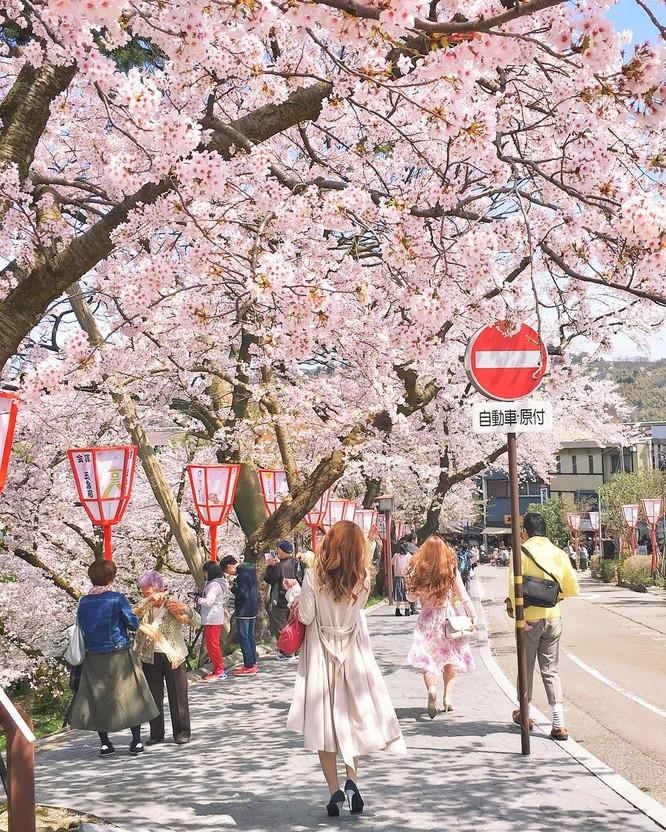 13 bức ảnh chứng minh Nhật Bản là một quốc gia đến từ hành tinh khác ảnh 13