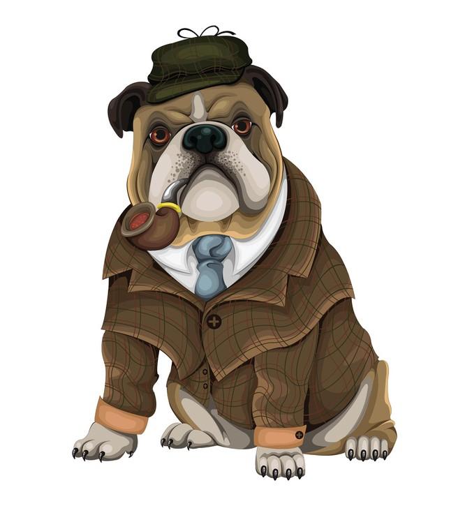 Các nhà khoa học chứng minh chó thông minh hơn chúng ta tưởng ảnh 1