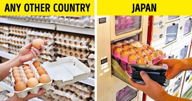 Sự thật về cuộc sống của người Nhật khiến thế giới bất ngờ ảnh 10
