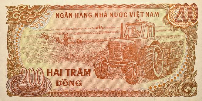 Khám phá Việt Nam qua con mắt của một phụ nữ Nga ảnh 10