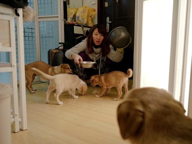 Câu chuyện về một người phụ nữ có 700 đề nghị làm bạn gái giả và vấn đề hôn nhân trong xã hội Trung Quốc hiện nay ảnh 4