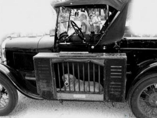 10 phát minh xe hơi táo bạo nhất mọi thời đại ảnh 7