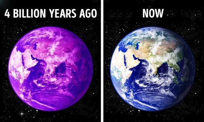 9 sự thật về hành tinh này mà trường học không bao giờ dạy bạn ảnh 7