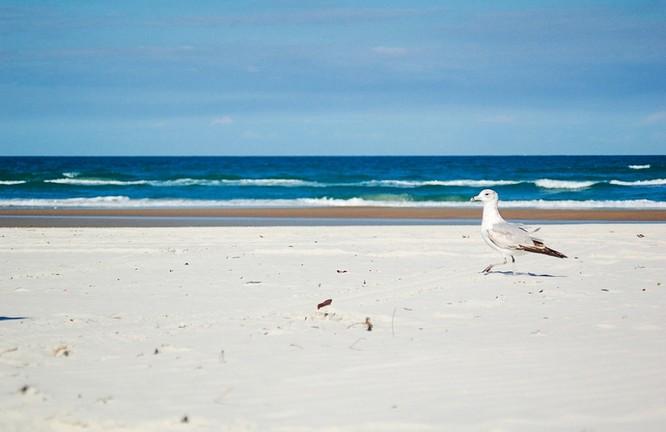10 bãi biển đẹp như thiên đường chỉ nên ngắm chứ không nên trải nghiệm ảnh 4