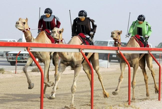 17 hình ảnh bá đạo chỉ có thể nhìn thấy ở Dubai ảnh 10