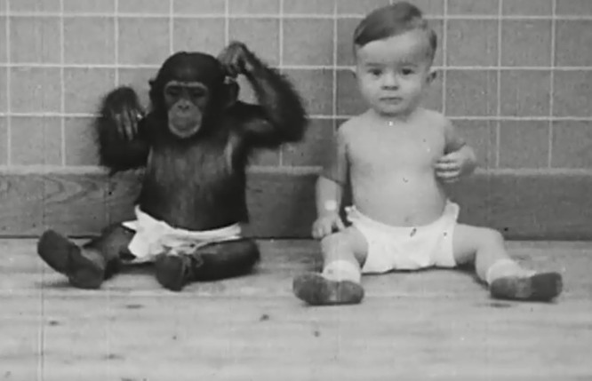 """Những cuộc thí nghiệm vô nhân đạo với trẻ em gây ra """"cơn bão"""" phẫn nộ trong lịch sử ảnh 2"""
