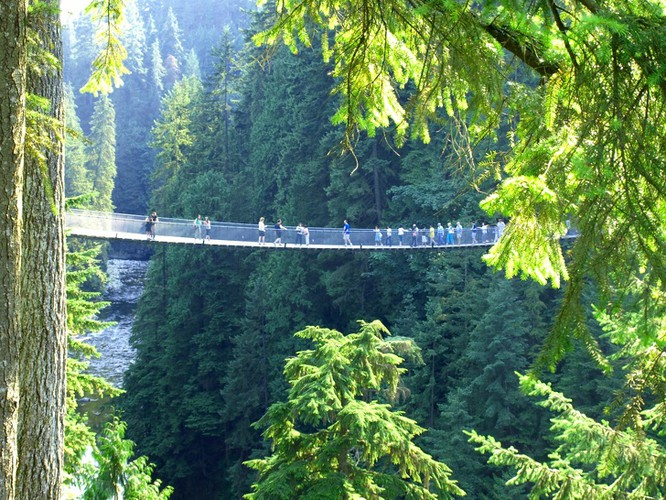 10 cây cầu kỳ lạ và độc đáo nhất trên thế giới ảnh 4