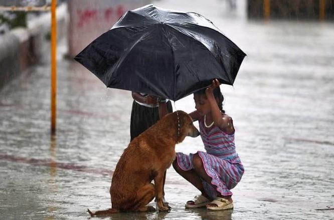 14 bức ảnh khiến bạn cảm thấy cuộc sống luôn ngập tràn yêu thương ảnh 11