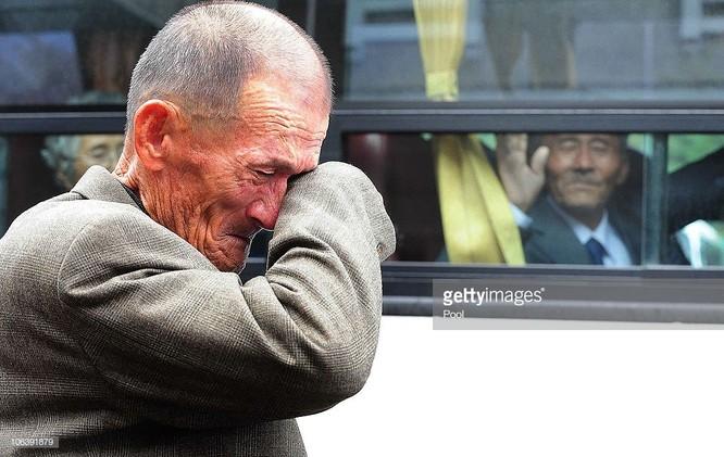 14 bức ảnh khiến bạn cảm thấy cuộc sống luôn ngập tràn yêu thương ảnh 14