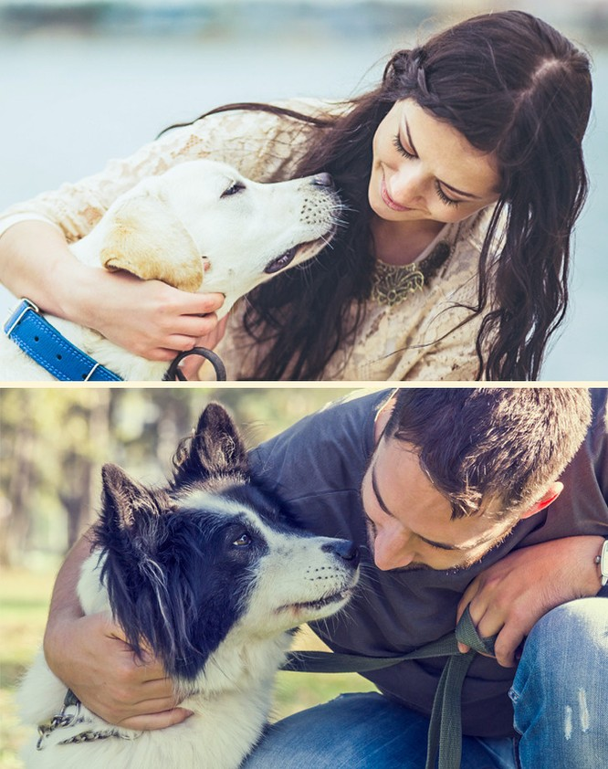 Bất ngờ với 7 điều kỳ lạ mà một chú chó có thể ngửi ảnh 2