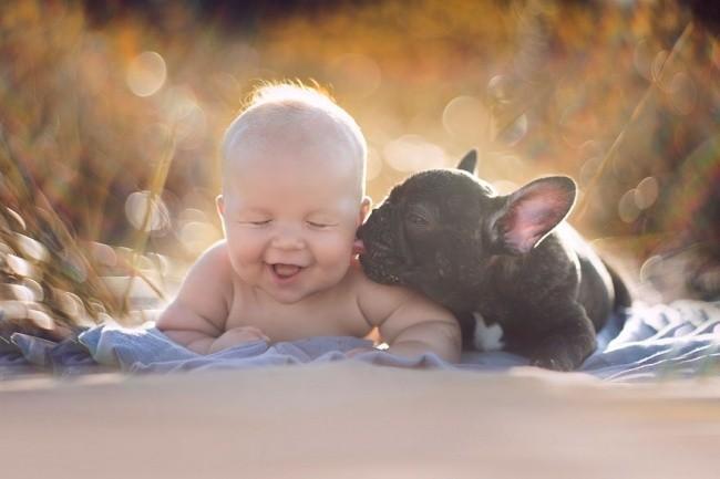 15 bức ảnh cảm động chứng minh chó là động vật trung thành nhất hành tinh ảnh 6
