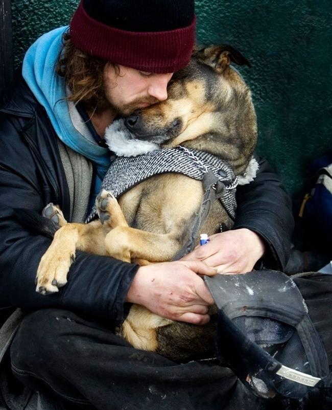 15 bức ảnh cảm động chứng minh chó là động vật trung thành nhất hành tinh ảnh 13