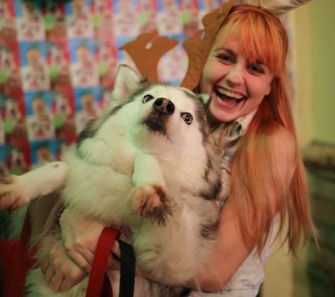 15 hình ảnh chứng minh không phải thú cưng nào cũng hào hứng với Giáng sinh ảnh 6