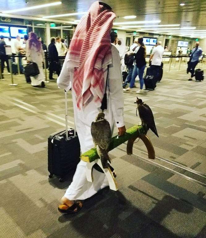 16 hình ảnh hài hước chỉ có thể xảy ra ở sân bay ảnh 1