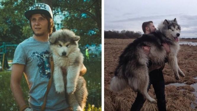 15 bức ảnh cảm động về quá trình trưởng thành của cún con ảnh 11