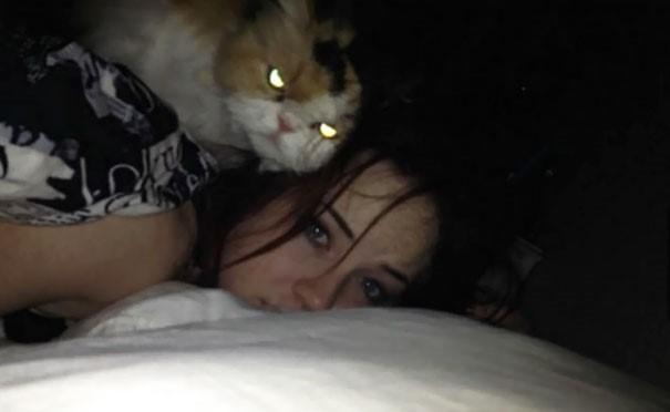 Chùm ảnh chứng minh lõAi mèo chính là hía»‡n thân của... quá»· dữ! - Ảnh 8.