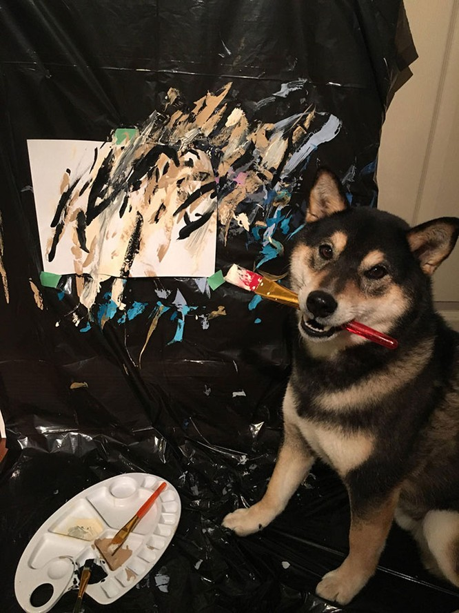 Chú chó Shiba Inu được chủ dạy vẽ tranh, kiếm tới 5000 USD từ tranh vẽ ảnh 1