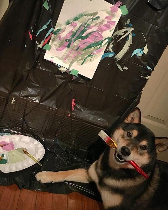Chú chó Shiba Inu được chủ dạy vẽ tranh, kiếm tới 5000 USD từ tranh vẽ ảnh 8