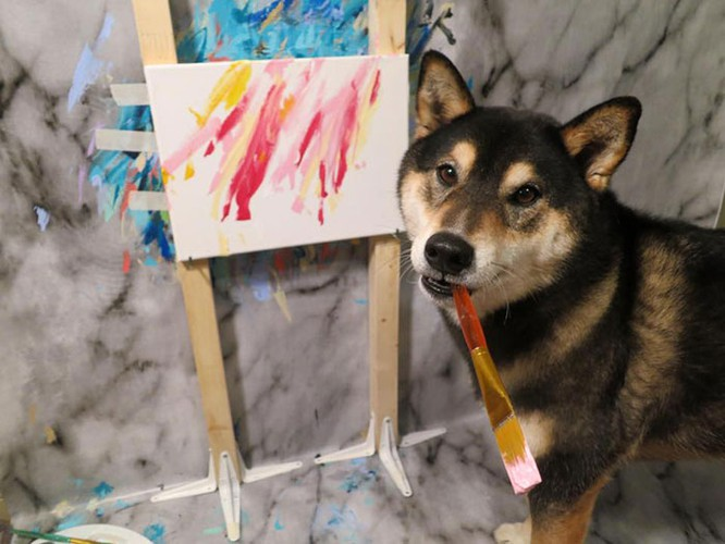 Chú chó Shiba Inu được chủ dạy vẽ tranh, kiếm tới 5000 USD từ tranh vẽ ảnh 12