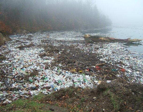 Sự thật đáng sợ về ô nhiễm nhựa - Đã đến lúc chúng ta cần phải thay đổi thói quen ngay lập tức ảnh 3