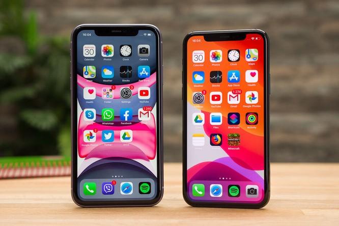 iPhone 11 và iPhone 11 Pro. Ảnh: Phone Arena