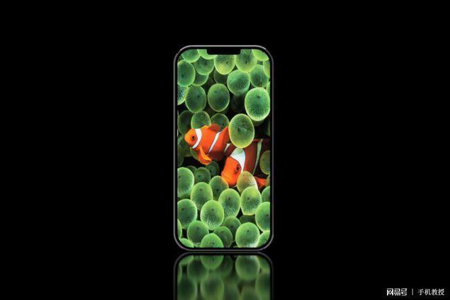 iPhone sẽ có hình dáng thế nào nếu Steve Jobs vẫn còn ảnh 4