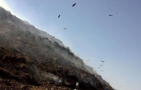 Thủ đô bẩn nhất thế giới: dân số 25 triệu người, rác chất cao 17 tầng, bốc mùi ảnh 1