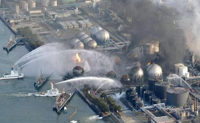 """Mười năm sau vụ rò rỉ hạt nhân, """"cá nhiễm phóng xạ"""" lại xuất hiện ở Fukushima ảnh 4"""