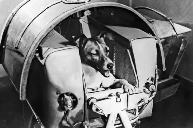Sau khi các phi hành gia tử vong trong không gian, liệu hài cốt họ có trôi đến các hành tinh khác? ảnh 2