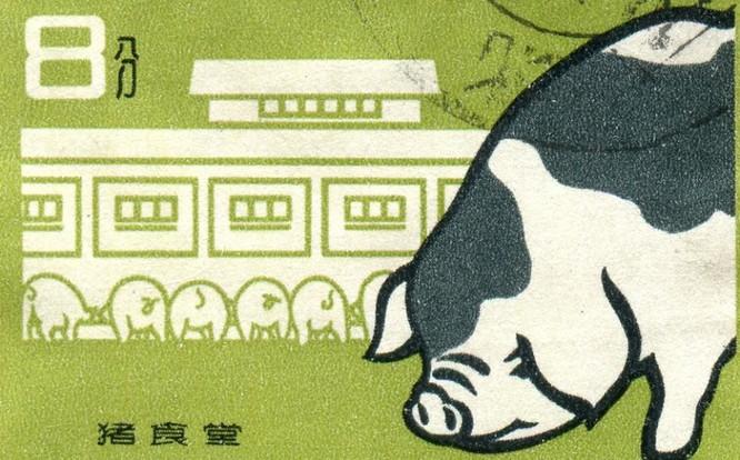 Tại sao các công ty công nghệ Trung Quốc tham gia vào lĩnh vực chăn nuôi heo? ảnh 2