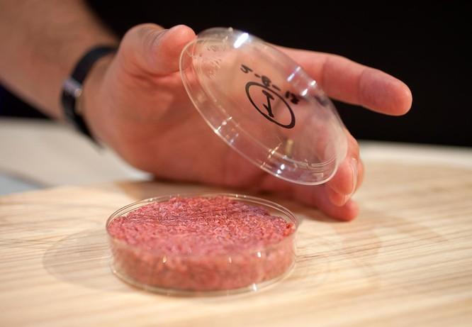 Liệu thịt nhân tạo có đủ sức thay thế hoàn toàn thịt thật trong tương lai? ảnh 4