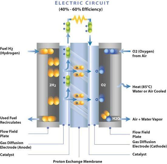 """Xe điện chiếm ưu thế, tại sao xe chạy bằng nhiên liệu hydro bị """"bỏ lại phía sau""""? ảnh 1"""
