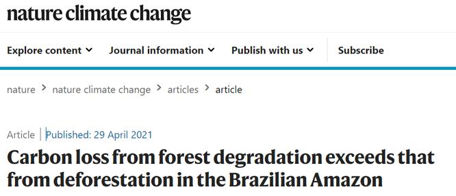 """""""Lá phổi của Trái đất"""" đang kêu cứu! Rừng nhiệt đới Amazon thải ra nhiều CO2 hơn lượng hấp thụ ảnh 1"""
