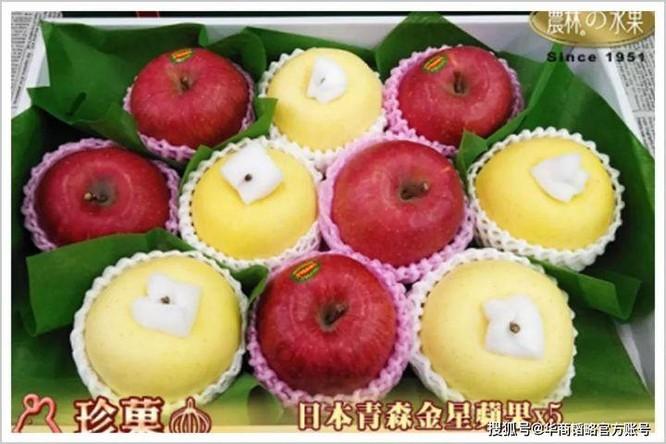 Vì sao hoa quả ở Nhật Bản rất đắt, một quả dưa có thể bán tới nửa tỉ đồng? ảnh 2