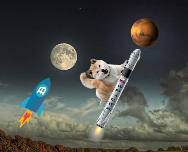 Elon Musk và thị trường tiền mã hoá: Kẻ thao túng đại tài? ảnh 1