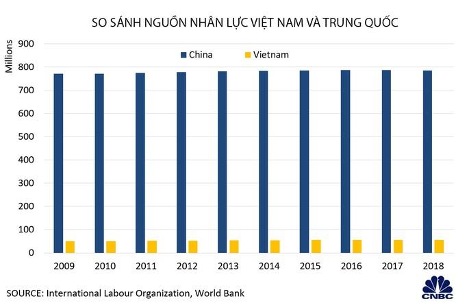 Biểu đồ so sánh lực lượng lao động Việt Nam và Trung Quốc (Nguồn: CNBC, Intenational Labour Organization, World Bank )
