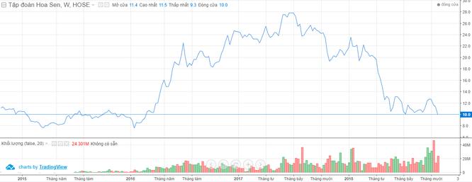 """Giá cổ phiếu giảm sâu, Tập đoàn Hoa Sen muốn nhờ một """"Hoa Sen"""" khác để tái cấu trúc hệ thống phân phối ảnh 1"""