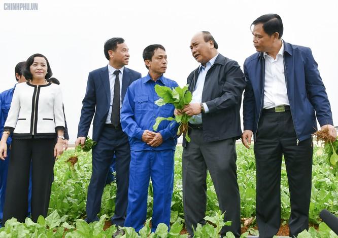 Thủ tướng thăm hỏi, động viên người lao động trên nông trường của Công ty Doveco - Ảnh: VGP/Quang Hiếu