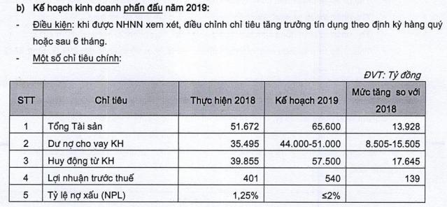 VietBank lên kịch bản tăng trưởng tín dụng tối đa 43,6% năm 2019 ảnh 1