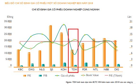 Thủ Đức House: Nguyên nhân nào khiến cổ phiếu TDH chưa tăng? ảnh 1