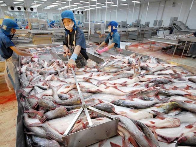"""Sau HNG, Thaco hợp tác chiến lược với """"vua cá tra"""" HVG ảnh 1"""