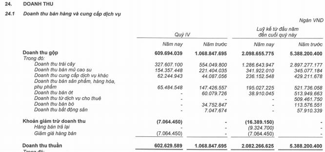 HAG báo lỗ ròng 1.609 tỷ đồng năm 2019 ảnh 2
