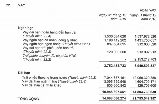 HAG báo lỗ ròng 1.609 tỷ đồng năm 2019 ảnh 3