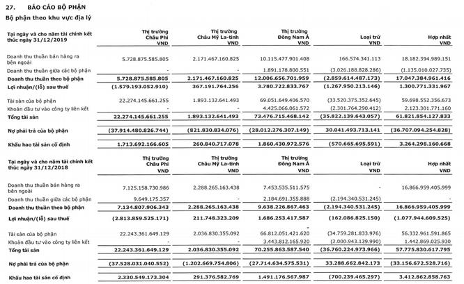 Thắng lớn ở ĐNA, bớt lỗ ở châu Phi, Viettel Global báo lãi sau thuế 403 tỷ đồng Quý 4/2019 ảnh 2