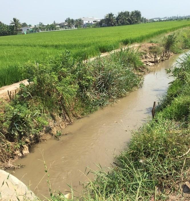 """Long An: NMN Nhị Thành """"bơm"""" gần 800.000 m3 nước ứng cứu nông nghiệp ảnh 2"""