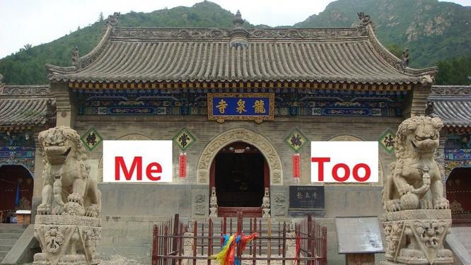 Xâm hại tình dục nữ đệ tử - Hội trưởng Phật giáo Trung Quốc bị bãi chức ảnh 3