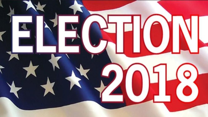 Những điểm đáng chú ý trong cuộc bầu cử giữa nhiệm kỳ ở Mỹ ảnh 1